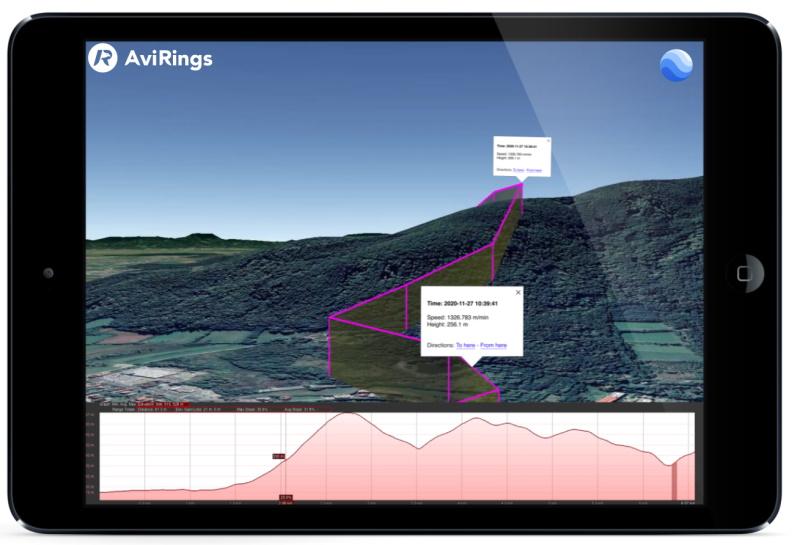GPS Pigeon Ring data visualisation